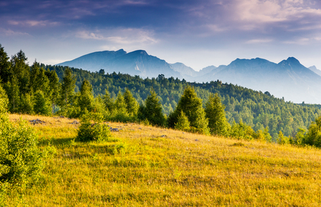 Scenic image of awesome hills in sunlight. Famous location in the National park Durmitor, village Zabljak, Montenegro, Balkans, Europe. Explore the environment. Charming wallpapers of earth beauty.