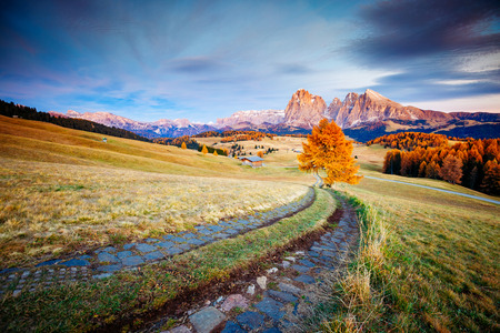 Scenic image of bright hills. Location Dolomiti alps, Compaccio, Seiser Alm or Alpe di Siusi, Bolzano province, South Tyrol, Italy, Europe, Great picture of wild area. Explore the beauty of earth. 版權商用圖片