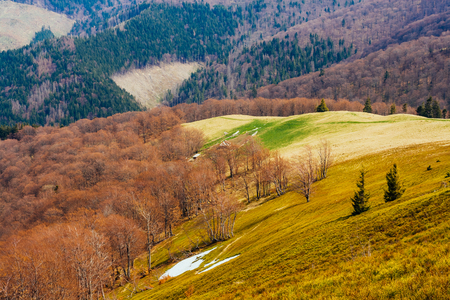 Great view of the alpine valley that glowing by sunlight. Dramatic and picturesque scene. Location place Carpathian, Ukraine, Europe. Retro and vintage style.