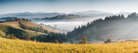 Misty alpine highlands in sunny day. Location Carpathian national park, Ukraine, Europe. Picture of wild area. Scenic image of hiking concept. Adventure vacation. Explore the beauty of earth. Stok Fotoğraf