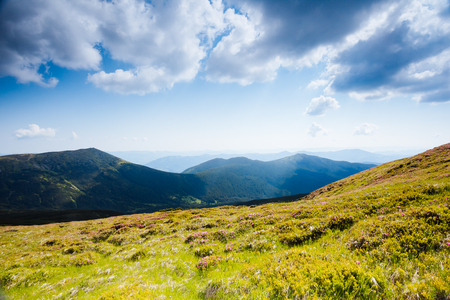 Awesome alpine highlands in sunny day. Location Carpathian national park, Ukraine, Europe. Picture of wild area. Scenic image of hiking concept. Superb tourism wallpapers. Explore the beauty of earth