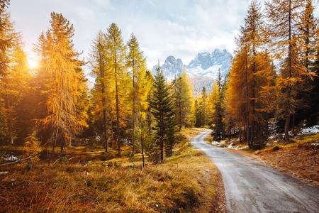 Scenic image of the alpine road. Location famous National Park Tre Cime di Lavaredo, Misurina, Dolomiti alps, South Tyrol, Italy, Europe. Great picture of wild area. Explore the beauty of earth. Reklamní fotografie