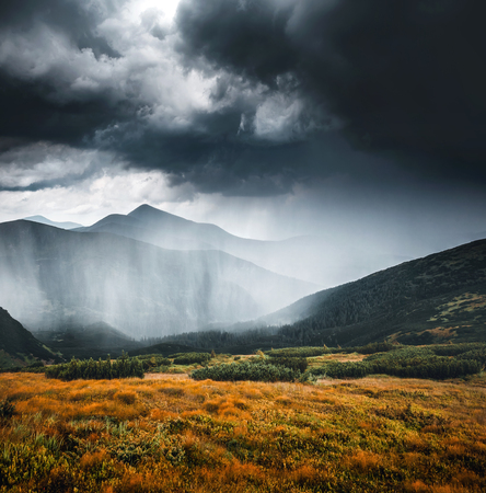 Powerful heavy rainfall. Location Carpathian national park, Ukraine, Europe. Picture of wild area. Scenic image of hiking concept. Moody weather. Discover the beauty of earth. Explore the environment