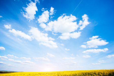 Fantastic view of the azure sky on a sunny day with fluffy clouds. Picturesque and gorgeous scene. Ecology concept - climate change in the environment. Wonderful image of wallpaper. Beauty world.