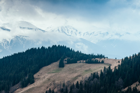 Foggy hills and gloomy mood of the scene of the alpine valley. Location place Carpathian Ukraine, Europe. Wonderful springtime wallpaper. Outdoor activity. Explore the world's beauty and wildlife.