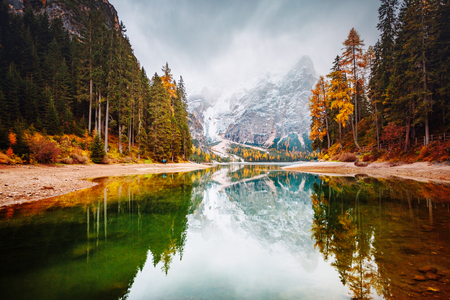 Scenic image of alpine lake Braies (Pragser Wildsee). Location place Dolomiti national park Fanes-Sennes-Braies, Italy, Europe. Great picture of wild. Explore the beauty of earth. Tourism concept. Stock Photo - 123402120