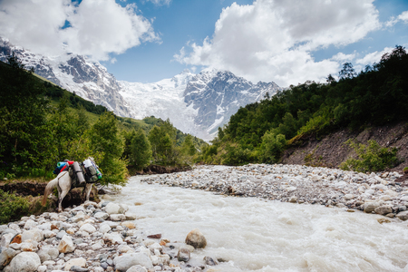Grand icefall near Mt Tetnuldi. Location Upper Svaneti, Georgia country, Europe. Main Caucasian ridge. Scenic image of lifestyle hiking concept. Adventure trip vacation. Explore the beauty of earth