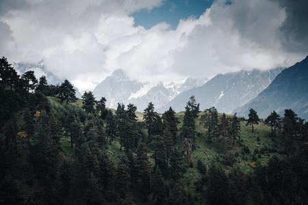 Alpine meadows near Mt Ushba. Location Upper Svaneti, Georgia country, Europe. Main Caucasian ridge. Scenic image of lifestyle hiking concept. Adventure summer vacations. Explore the beauty of earth.