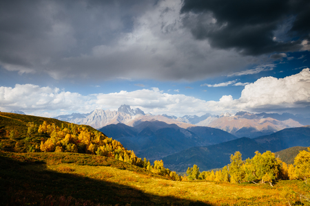 Alpine meadows in the sunny light. Location Upper Svaneti, Georgia country, Europe. Main Caucasian ridge. Scenic image of wild area. Discover the beauty of earth. Photo of climate change. Standard-Bild - 123400131