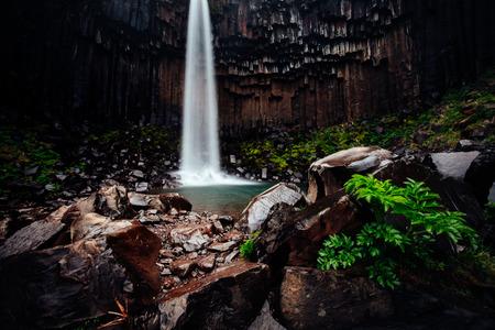 Amazing view of Svartifoss waterfall. Scenic image of beautiful nature landscape. Popular tourist attraction. Location Skaftafell National Park, Vatnajokull glacier, Iceland, Europe. Beauty of earth.