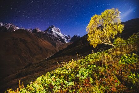 Scenic image of night sky over the peak Ushba. Location Mestia, Upper Svaneti, country Georgia, Europe. Main Caucasian ridge. Astrophotography. Adventure vacations. Explore the beauty of earth. Stock Photo