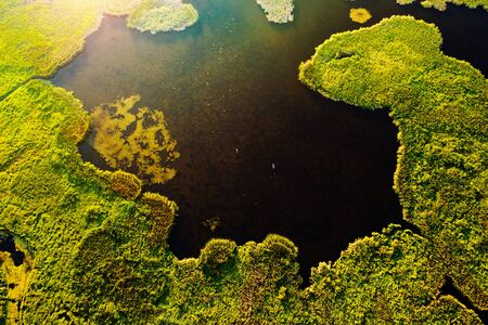 Lush wetlands of birds eye view. Green field background. Location place of Ukraine countryside, Europe. Textural image of drone photography. Exotic nature wallpapers. Discover the beauty of earth.