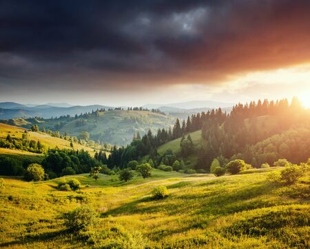 Fantastic countryside landscape in morning light. Location place Carpathian mountains, Ukraine, Europe. An attractive summer scene on a sunny day.