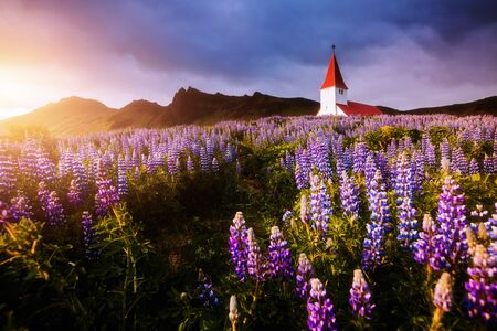 Great view of Vikurkirkja christian church in evening light. Location place Vik i Myrdal village, Iceland, Europe. Scenic image of most popular tourist destination. Discover the beauty of earth.