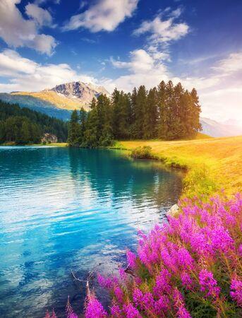 Azuurblauwe vijver Champfer is een unieke plek. Locatie Silvaplana dorp, Zwitserse alpen, Maloja, Europa. Prachtig beeld van behang. Schilderachtig beeld van omgeving, wandelconcept. Ontdek de schoonheid van de aarde.
