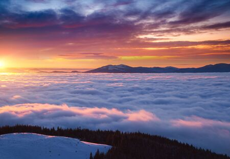 Fantastic air view of the valley covered with dense fog. Location Carpathian mountain, Ukraine, Europe. Magical wintry scene. Fabulous winter wallpaper. Happy New Year! Discover the beauty of earth.
