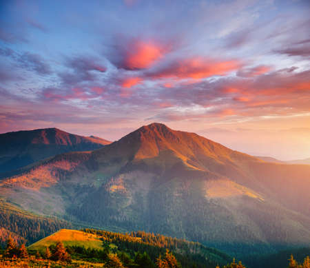 Tranquil evening landscape in the mountains at sunset. Location place of Carpathian national park, Ukraine, Europe. Wild environment. Incredible natural wallpaper. Discover the beauty of earth.