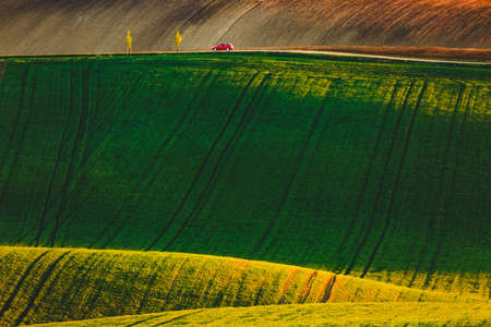 Tranquil rural landscape in sunny day. Beautiful sunlight on the wavy fields. Location place of South Moravia region, Czech Republic, Europe. Photo of ecology concept. Discover the beauty of earth.