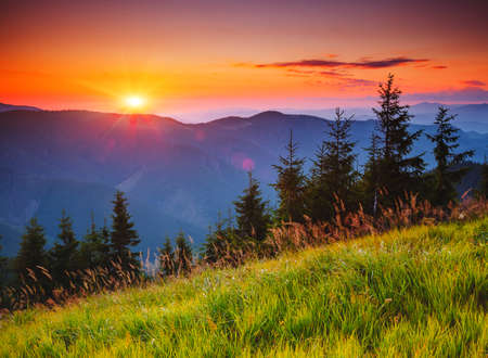 Picturesque mountains are illuminated by the evening light. Location place of Carpathian national park, Ukraine, Europe. Wild environment. Fantastic natural wallpaper. Discover the beauty of earth. Standard-Bild - 158640784
