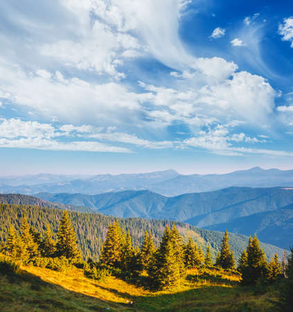 Magnificent view of green mountains in summer sunny day. Location place of Carpathian national park, Ukraine, Europe. Wild protected area. Incredible natural wallpaper. Discover the beauty of earth. Standard-Bild - 158673266