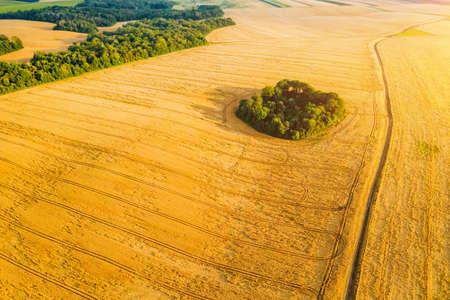 Breathtaking top view of agricultural area and cultivated fields in sunny day. Location place of Ukraine, Europe. Drone photography. Concept of agrarian industry. Discover the beauty of world. Standard-Bild - 158709667