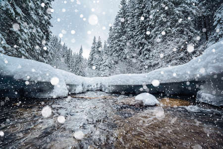 Frozen stones on the river on a frosty day. Location Carpathian mountain, Ukraine, Europe. Alpine ski resort. Exotic wintry scene. Great winter wallpaper. Happy New Year! Discover the beauty of world.