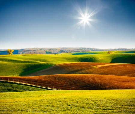 Attractive sunlight on the wavy fields of agricultural area. Location place of South Moravia region, Czech Republic, Europe. Minimalistic landscape of agrarian industry. Discover the beauty of world.