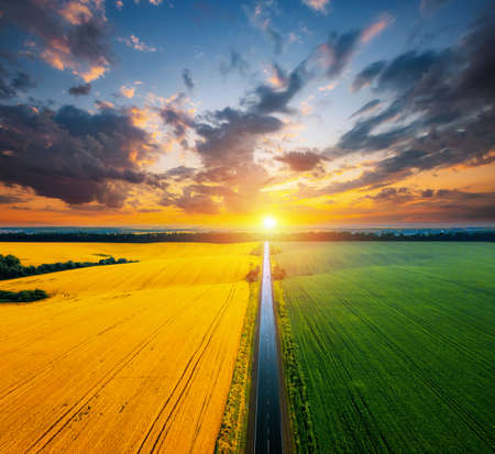 Aerial top view of rural road passing through agricultural land and cultivated fields. Location place of Ukraine, Europe. Drone photography. Concept of agrarian industry. Discover the beauty of world.