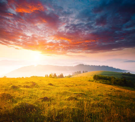 Evening mountains landscape are illuminated by the sunset. Picture of colorful cloudy sky. Location place of Carpathian mountains, Ukraine, Europe. Perfect summertime wallpaper. Beauty of earth.
