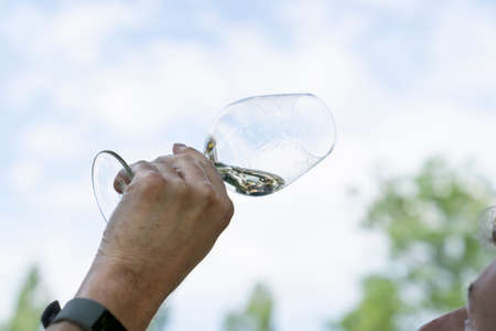 Male hands holding a glass of white wine at an outdoor wine tasting Standard-Bild