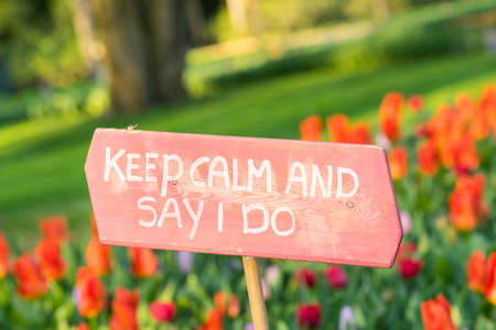 "Pink sign in a bed of red tulips saying ""Keep calm and say I do"" wedding proposal engagement"