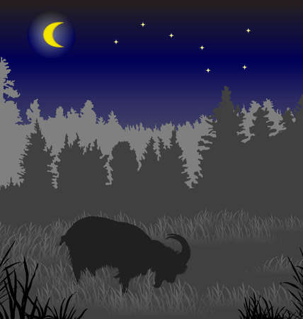 grazed: The black goat grazed on a meadow under the moon and constellation the Big Dipper.