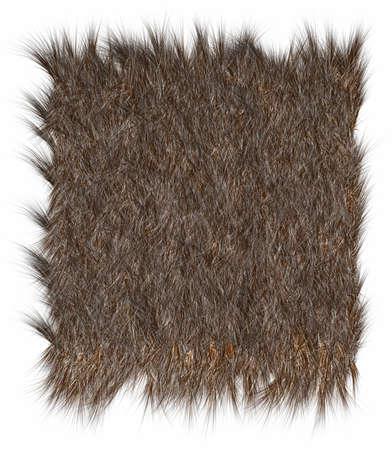 starr: Die Textur von Pelzen Bear - close-up. Lizenzfreie Bilder
