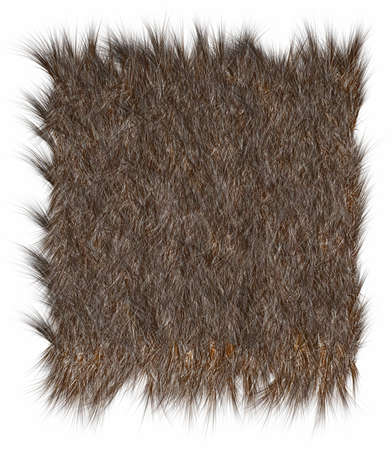 The texture of fur bear - close-up. Stock Photo