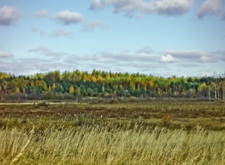 Beautiful Russian autumn landscape with a field, wood and clouds. Stock Photo - 20443521