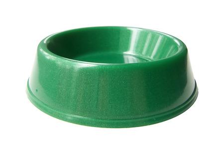 Cat   dog   rodent feeding green bowl, isolated on white background photo