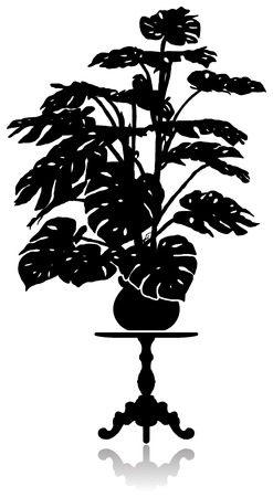 coffee table: A silhouette of a large monstera standing on a round coffee table. Illustration