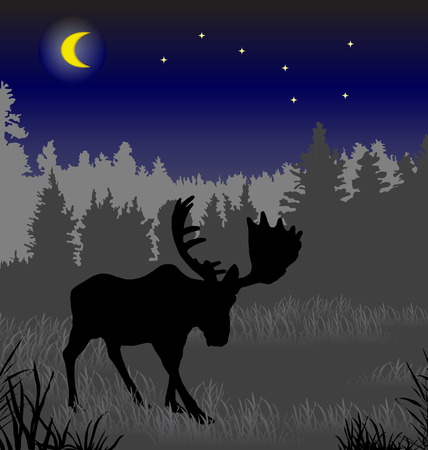 waning moon: Elk in the night forest. There is a variant in a vector.