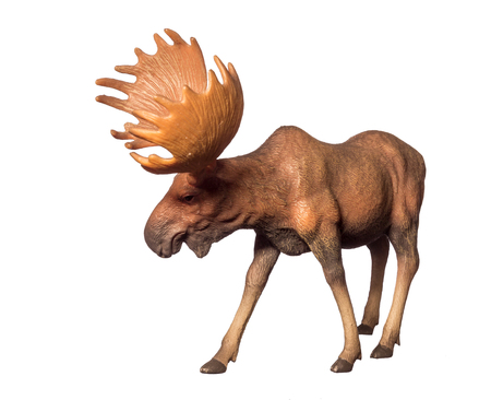 collectible: Beautiful collectible figure of an elk on white background.