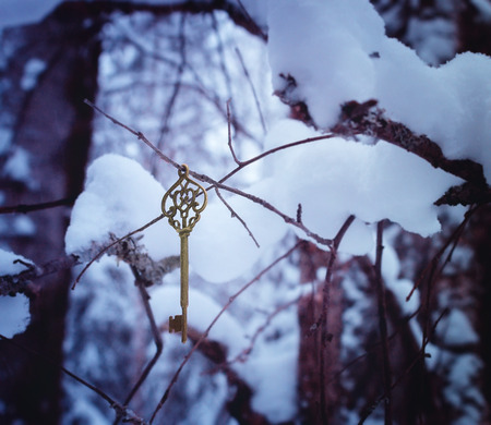 golden key: Magic golden key in the winter woods.