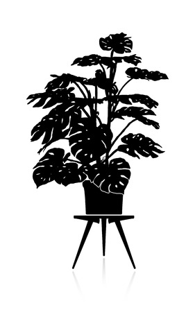 Silhouette of a big monstera in a flower pot on a stand.