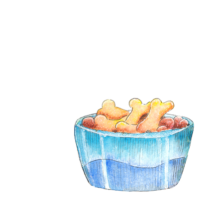 Dog bowl. Watercolor sketch. Reklamní fotografie