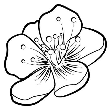 Apple blossom. Contour pattern Illusztráció