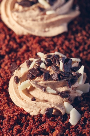 escarapelas: decoration top of cake in the form of rosettes of cream and chocolate chips , close-up. Vintage style .