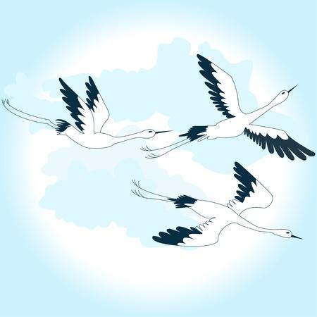 birds in the sky Illustration