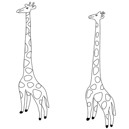 giraffe Stock Vector - 21852550