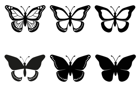 swallowtail butterfly: butterflies Illustration