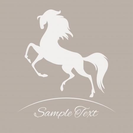 horse silhouette - vector,  illustration   Vector