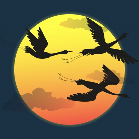 silhouette of the birds at sunset - vector Illustration