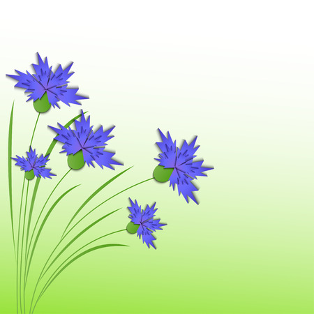 floral background - Illustration, vector  Illustration
